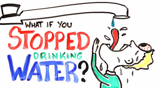 What Happens if You Don't Drink Enough Water Daily? [Video]