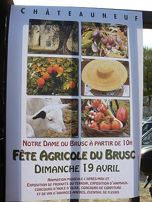 fête agricole du Brusc.jpg