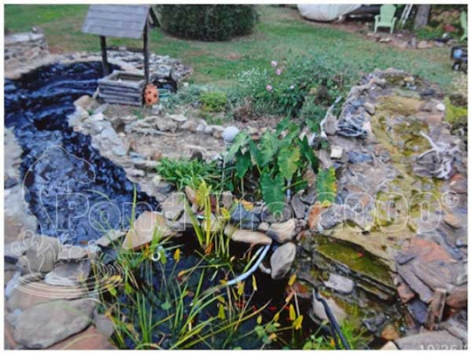 Pond Liner Paint- A necessary solution to avoid pond leakage and damage