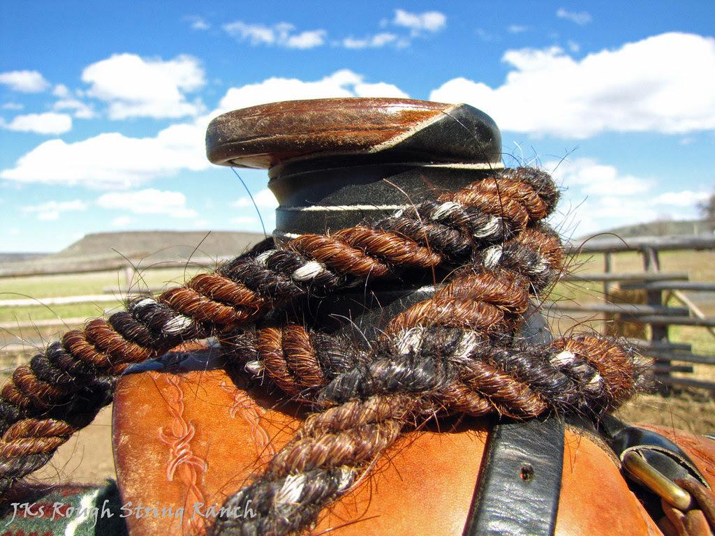 Mane Hair Mecate, Horn & Sky