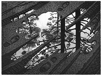 reflexo do céu num charco