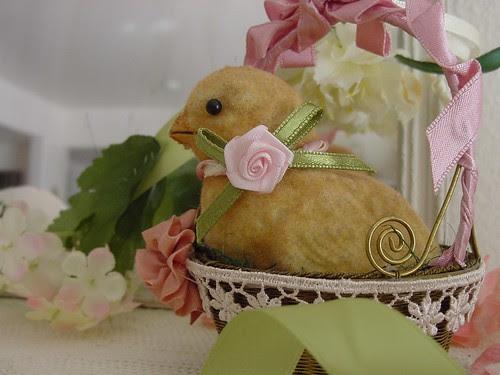 Chick 16Feb08 02