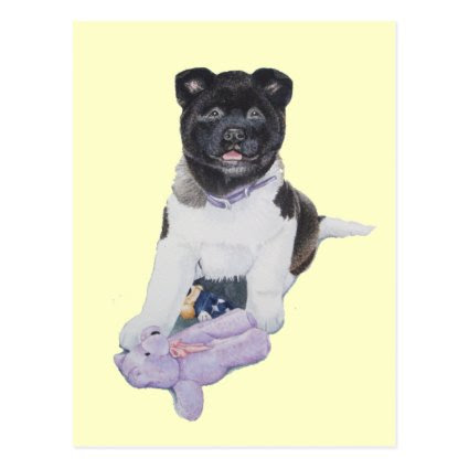 Cute puppy akita and teddy realist art postcard
