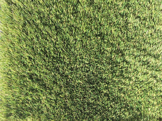 Artificial Grass in West Palm Beach | Using Artificial Grass Indoors
