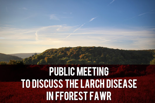 Public Meeting to Discuss the Larch Disease in Fforest Fawr
