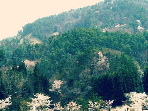 fukiya mountains