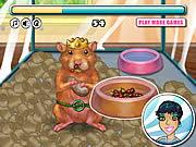 Jogar My tiny hamster Jogos