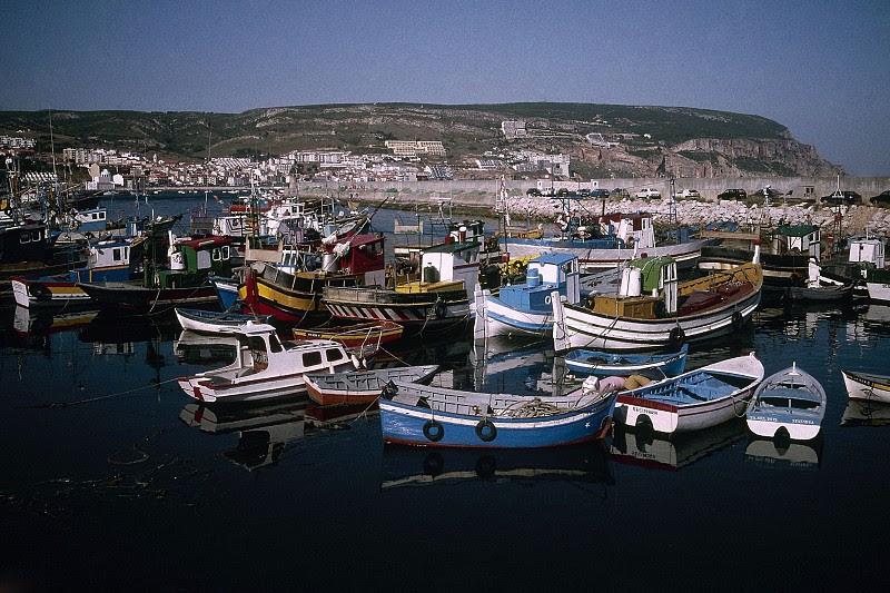 """Resultado de imagem para Sindicatos dizem que quotas para a pesca em 2018 são """"globalmente positivas"""""""