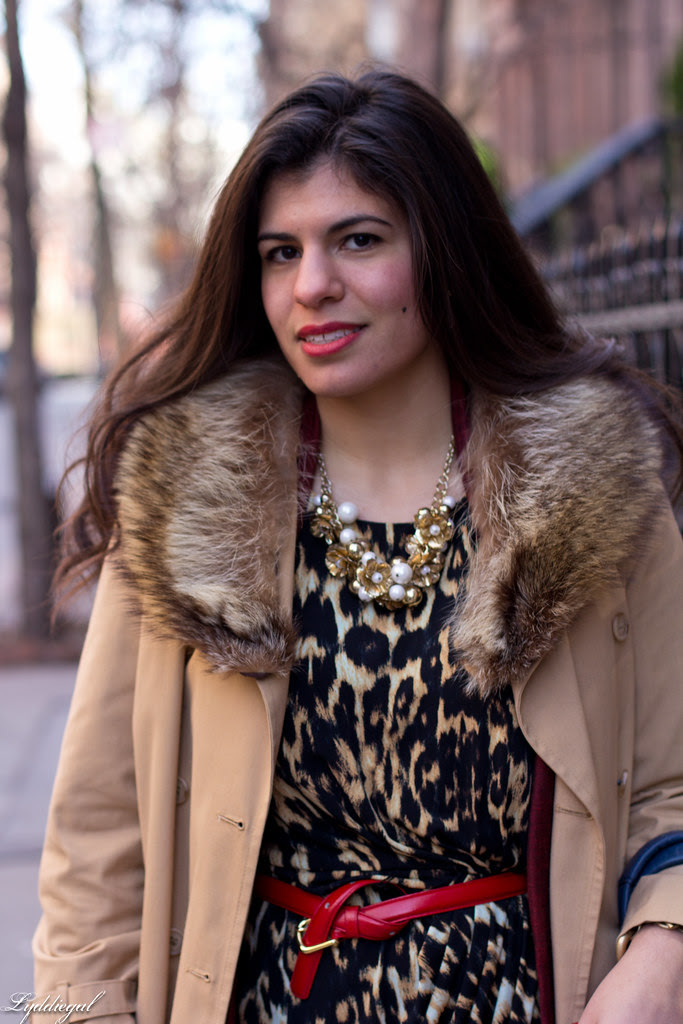 karl - leopard.jpg