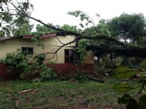 Varias casas resultaron afectadas. CRH
