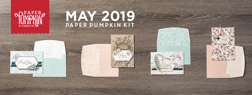 Image result for paper pumpkin may 2019