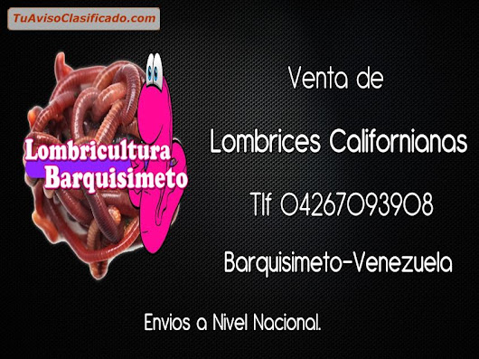 Lombrices Rojas Californianas en Venezuela... tlf 04267093908.. - ...