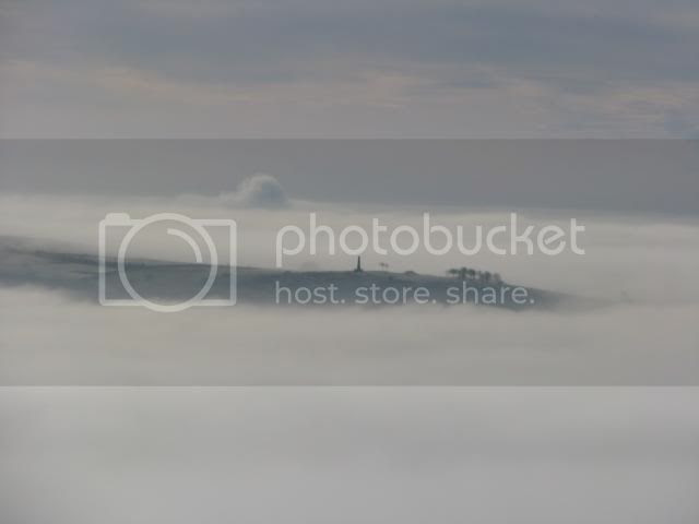 photo fog101.jpg