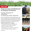 Perennial Grass Establishment for Biomass Production
