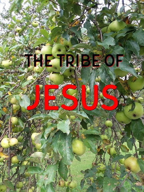 The Tribe of JESUS!