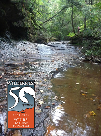 Wild South   » Wilderness 50/40 Anniversary Celebration in Bankhead National Forest (AL), Oct. 26