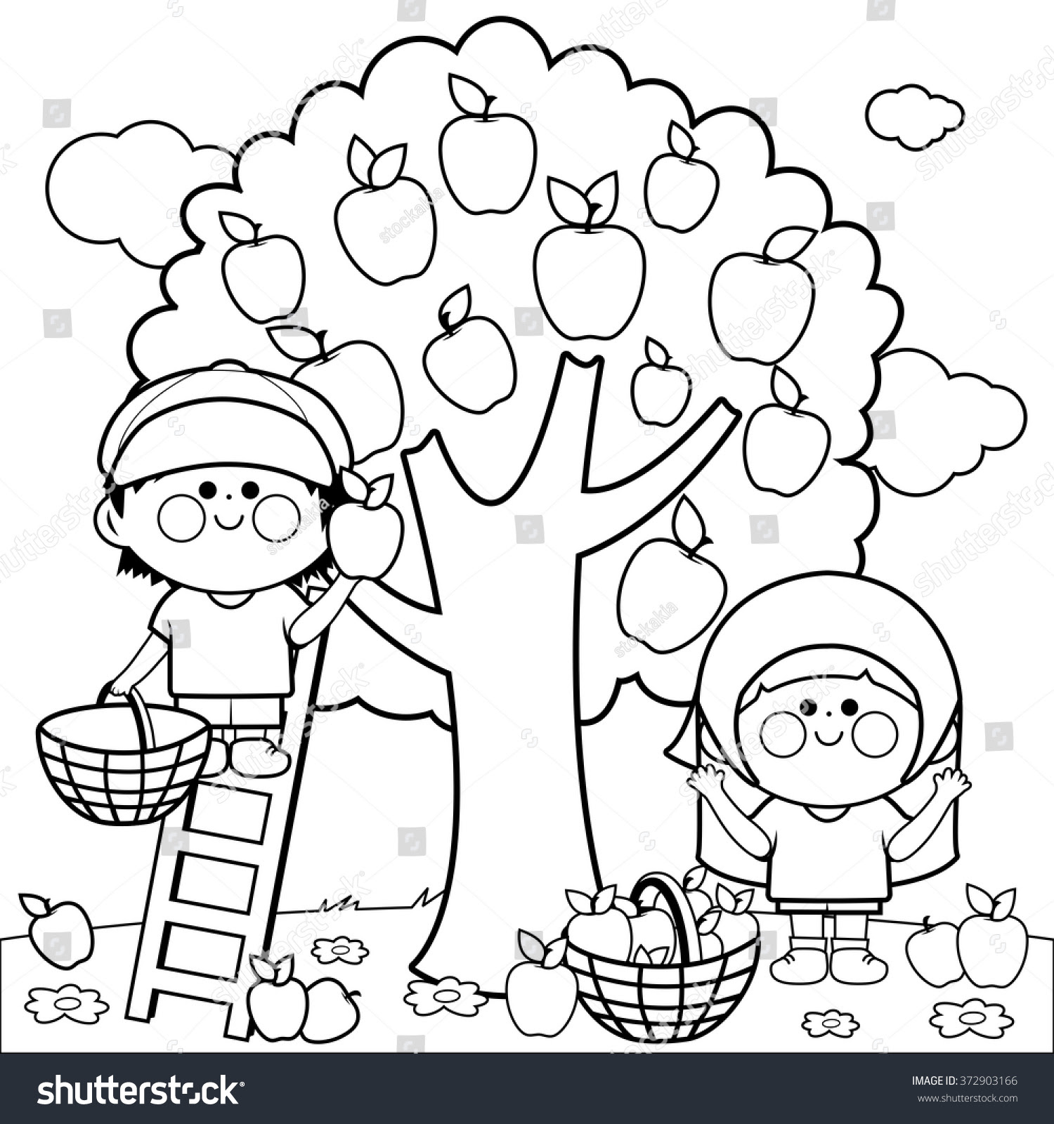 stock vector vector black and white illustration of two children a boy and a girl picking apples under a tree 372903166
