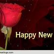 New Year Like A Rose...
