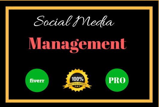 waleeddrl17 : I will be your pro social media manager for $95 on www.fiverr.com
