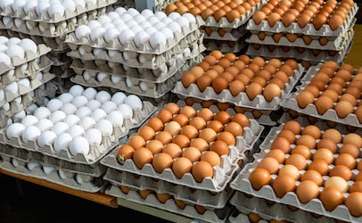 Get lot codes to check to see if your eggs are on the list. Recall 206,749,248 eggs potential to be ...