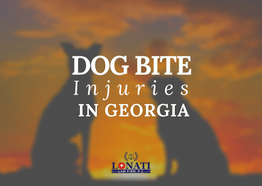 3 Things To Know About Dog Bite Injuries in Georgia