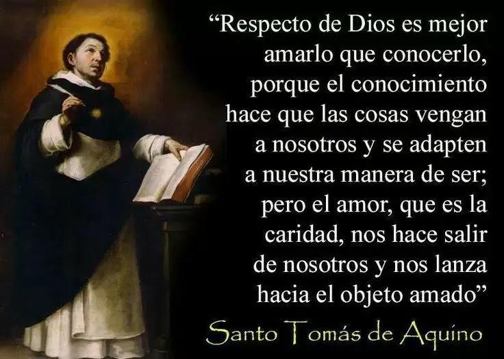 Santo Tomás De Aquino Biografía Frases Santoral Y Mucho Más