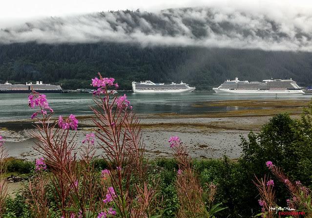 2013-08-05 Juneau Alaska-3438