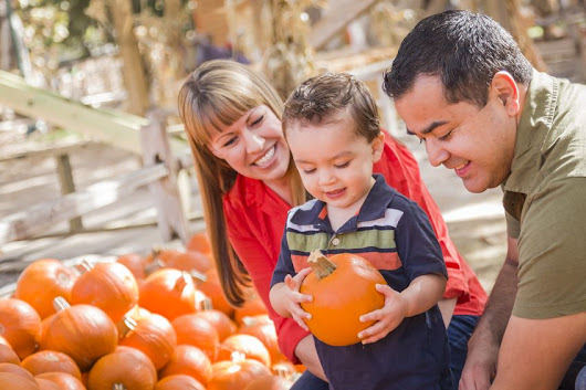 Enhance your hearing health with seasonal fall foods
