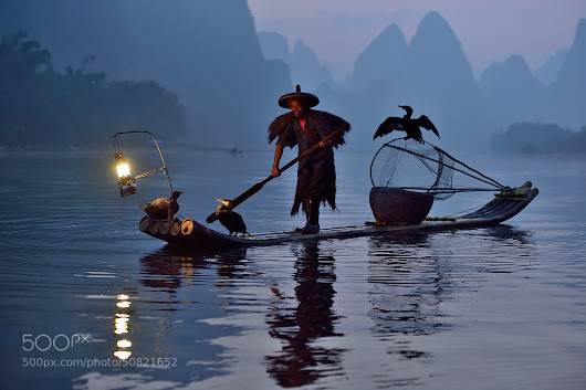 Fisherman and his birds