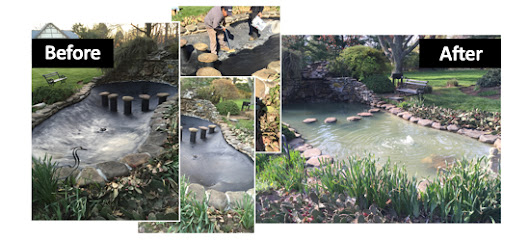 Rubber Pond Paint -Get pond solution made with the best pond friendly material