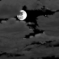 Tonight: Mostly cloudy, with a low around 25. North wind 7 to 11 mph.