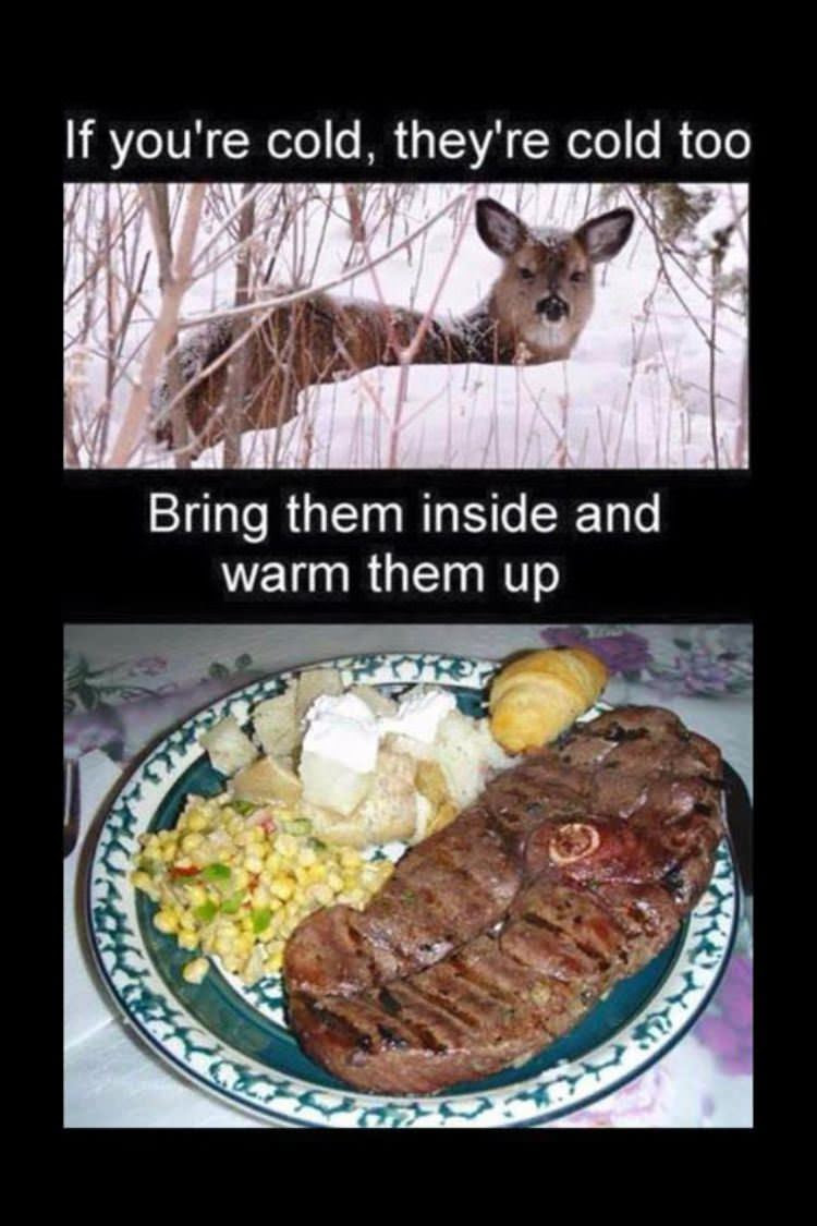 DailyHaHa.com Funny Pictures