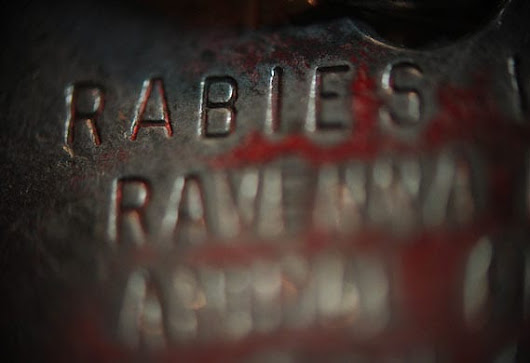 Ten Facts About Rabies