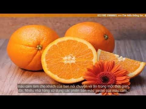 Tìm hiểu ý nghĩa của màu cam