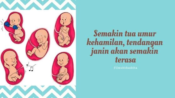 Seorang ibu akan selalu bersemangat jika bayinya menendang Fakta Tentang Tendangan Bayi