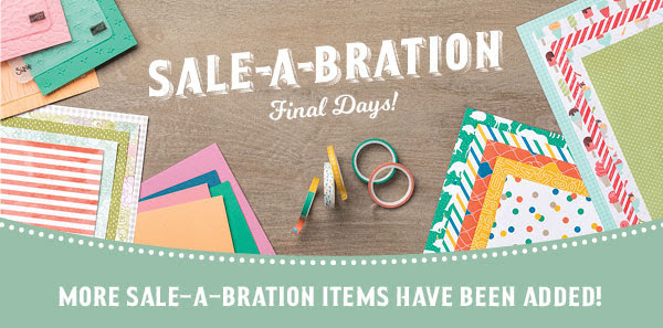 Extra Sale-a-bration Goodies Large