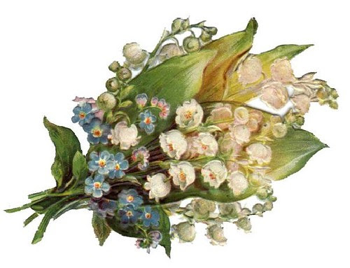 flowers - lily of the valley
