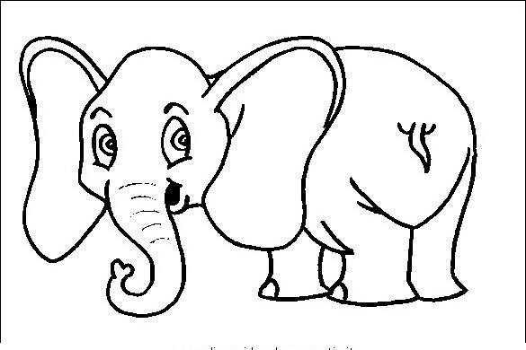 Disegni Di Elefanti Da Colorare