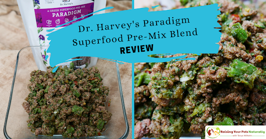 Dr. Harvey's Paradigm Superfood Pre-Mix Blend Review | Best Dog Food Mixes ~ Raising Your Pets Naturally with Tonya Wilhelm