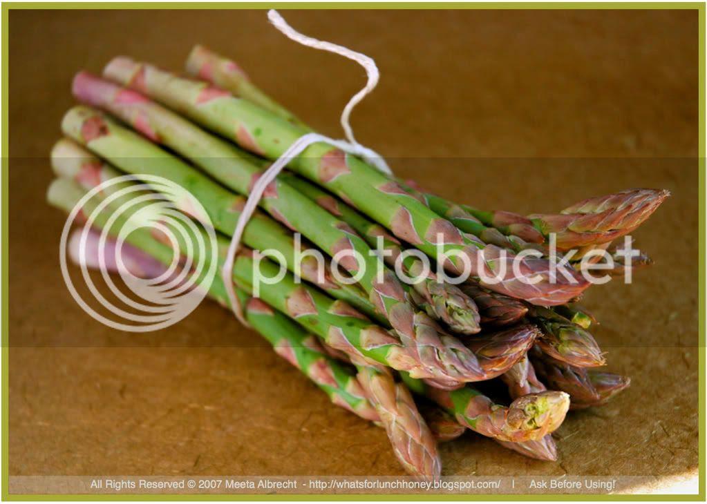 Asparagus by Meeta Albrecht