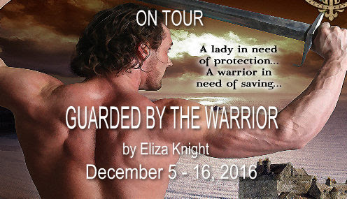 guarded-by-the-warrior-tour-banner