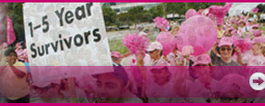 Susan G. Komen® Lowcountry Affiliate
