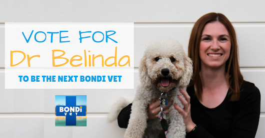 Dr Belinda - The New Bondi Vet - Dr Belinda The Vet