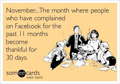 November...The month where people who have complained on Facebook for the past 11 months become thankful for 30 days. | Seasonal Ecard