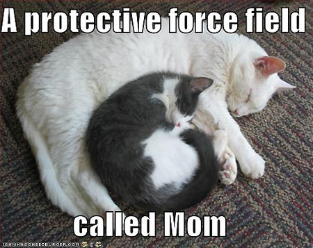 Funny Mothers Day Quote Quote Number 558335 Picture Quotes