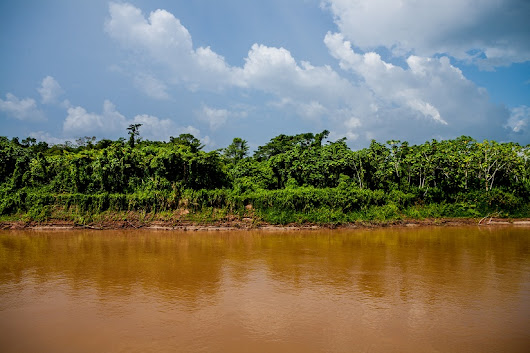 Travels through the Amazon: Journeying through the rainforest, along Lima, Peru, Brazil