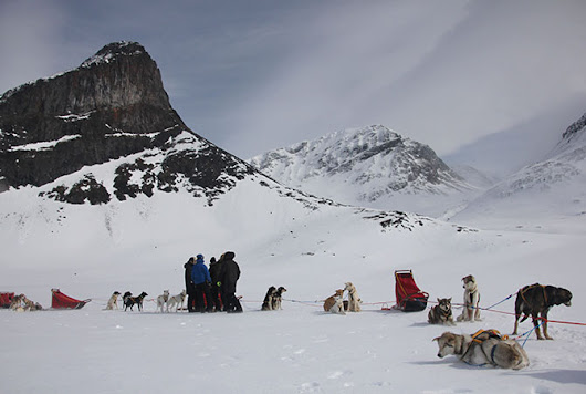 Dog Sledding in Arctic Norway - Tomorrow Bear