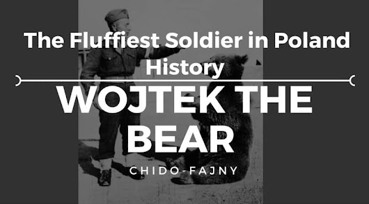 Wojtek The Bear | The Fluffiest Soldier in Poland History | Chido-Fajny