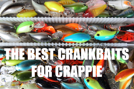 The Top 5 Best Crappie Crankbaits - Crappie Are Cranky For Crankbaits -