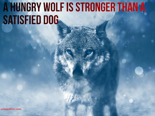 Hungry wolf is stronger than satisfied dog
